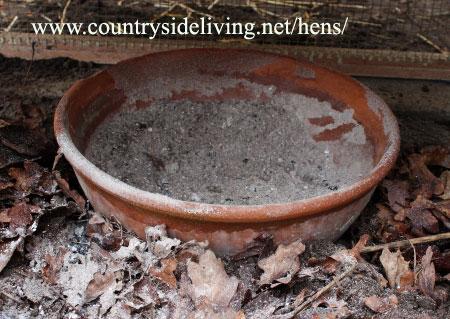 Пылевая ванна для домашних кур несушек. Обустройство курятника и выгула