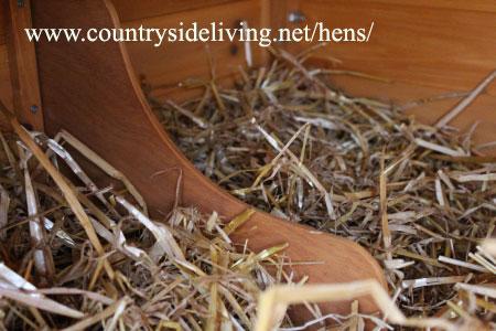 Гнезда для кур несушек. Обустройство курятника