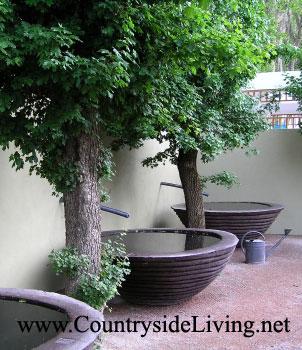 Полив огорода, сада, участка. Сбор дождевой воды - идеи от садовых дизайнеров на выставке Челси-2006