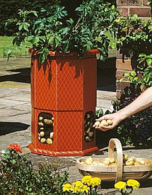 Картофель: выращивание в специальных пластиковых бочках-контейнерах