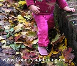 Опавшие осенние листья красиво смотрятся на дорожках естественного сада. Дочка гуляет осенью