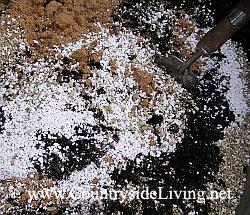 Домашнее выращивание клубники. Подготовка грунта
