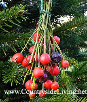Как украсить новогоднюю елку. Природный (эко) стиль. Засушенные ягоды шиповника на веточках