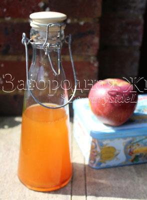 Домашний яблочный уксус. Как приготовить? 2 рецепта приготовления дома