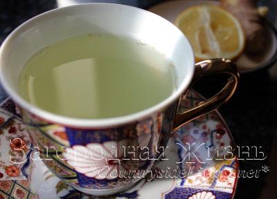 Чай с имбирем (имбирный чай). Как приготовить дома