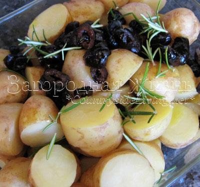 Молодой картофель, запеченный в духовке с вялеными оливами. Рецепт, фото