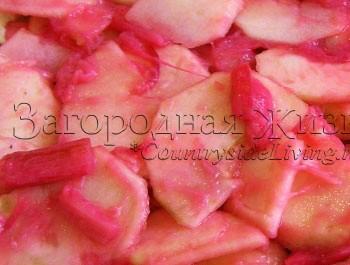 Пирог из ревеня и яблок: красные стебли ревеня сделают начинку розовой