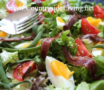 Салат нисуаз (Salade niçoise) из помидоров, зеленого салата, вареного яйца, оливок и анчоусов. Рецепт