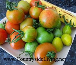 Чтобы зеленые помидоры дозрели, положите их в вазу рядом с другими фруктами (лучше - яблоками или бананами). Мои помидоры, последний урожай, ноябрь