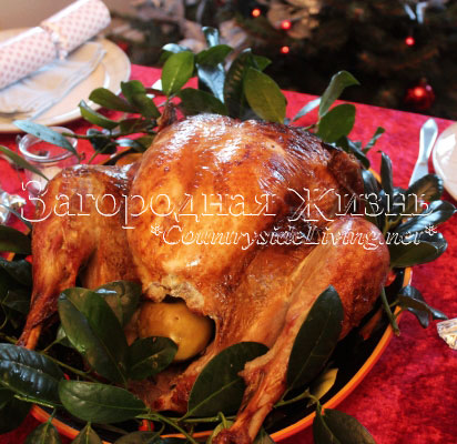 Запекать курицу в майонезе в духовке рецепт с фото
