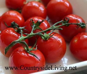 Салаты из помидоров рецепты фото